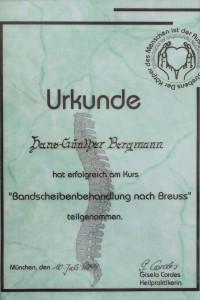 Bandscheibenbehandlung Hans Bergmann